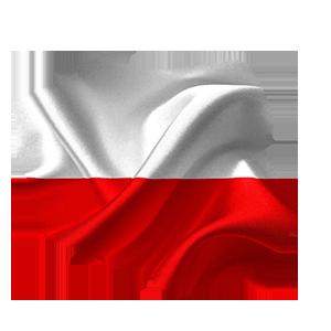 busy_do_polski-300